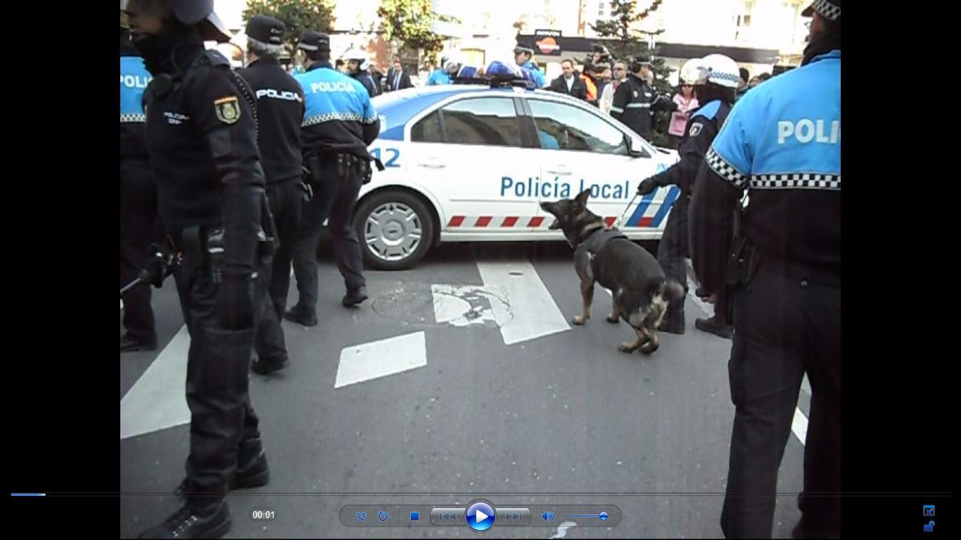 perro policial local