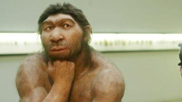 Neandertal_TINIMA20131111_1088_19